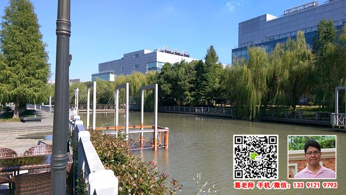 G1618闵行 紫竹高新区数码港一楼390平 楼上各种面积 实验室办公楼研发中心出租
