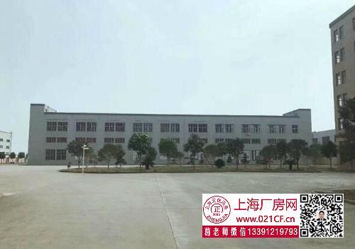 G1731 奉贤 南桥奉浦工业园开发区新出1100平标准厂房仓库出租