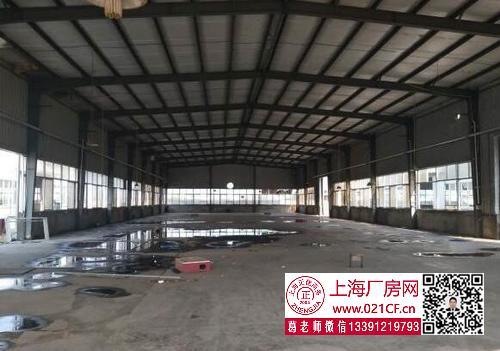 G1734 奉贤 奉城 奉贤工业区开发区项目全独栋厂房出租 400KV 无立柱 104地块