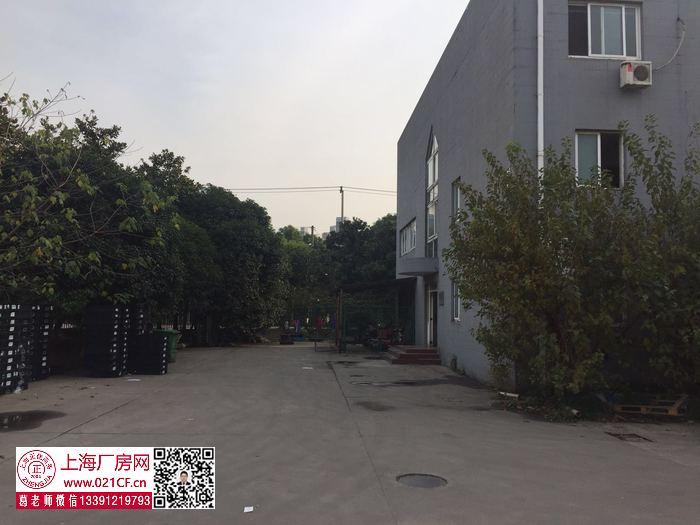 G1751 嘉定新城 阳川路 独门独院 一楼1600平 二楼1600平 一楼1200平 厂房仓库出租