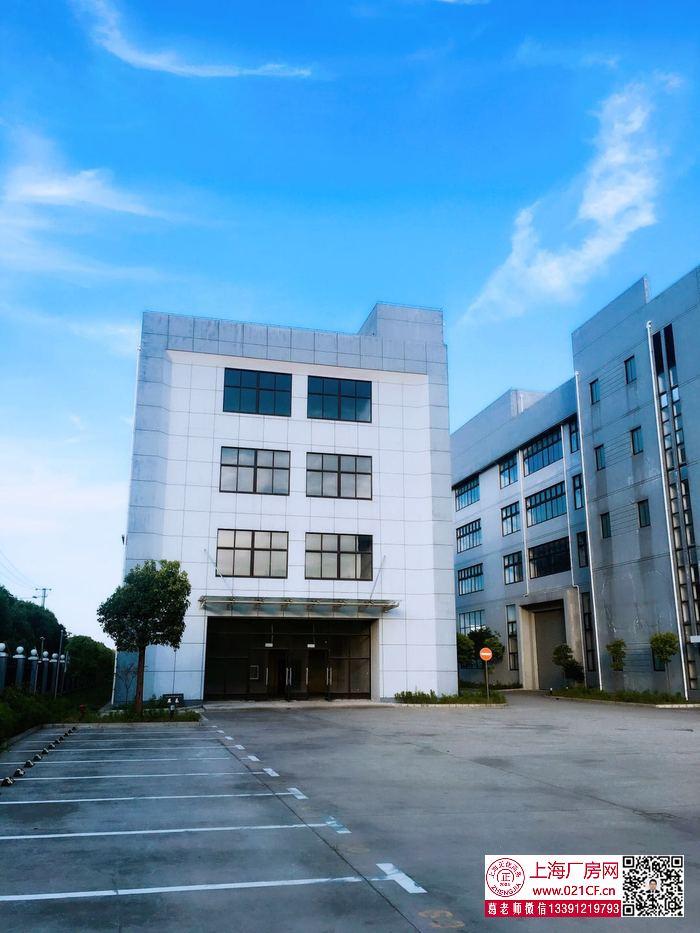 G1766 浦东四团镇平海路多层厂房仓库出租 1000平起租  104地块可环评 无税收要求