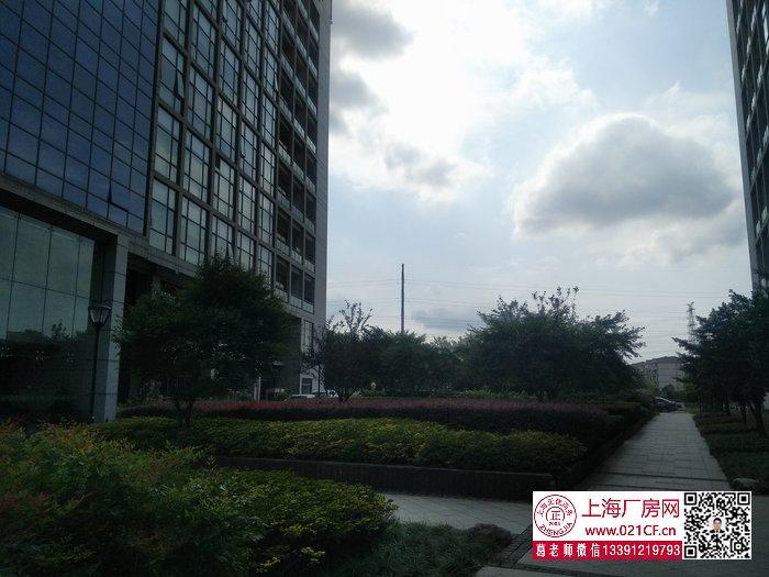 G1776 静安 地铁一号线汶水路站附近 市北高新园区内研发办公展示楼出租 一楼500平,楼上200平起租