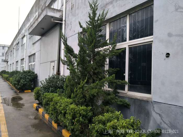 A8322 嘉定外冈镇高端工业园东区3500平单层可装行车厂房出租