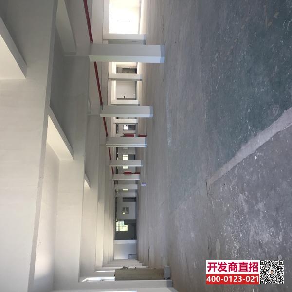 G1931 昆山市千灯镇宏信路带货梯3400平厂房仓库出租