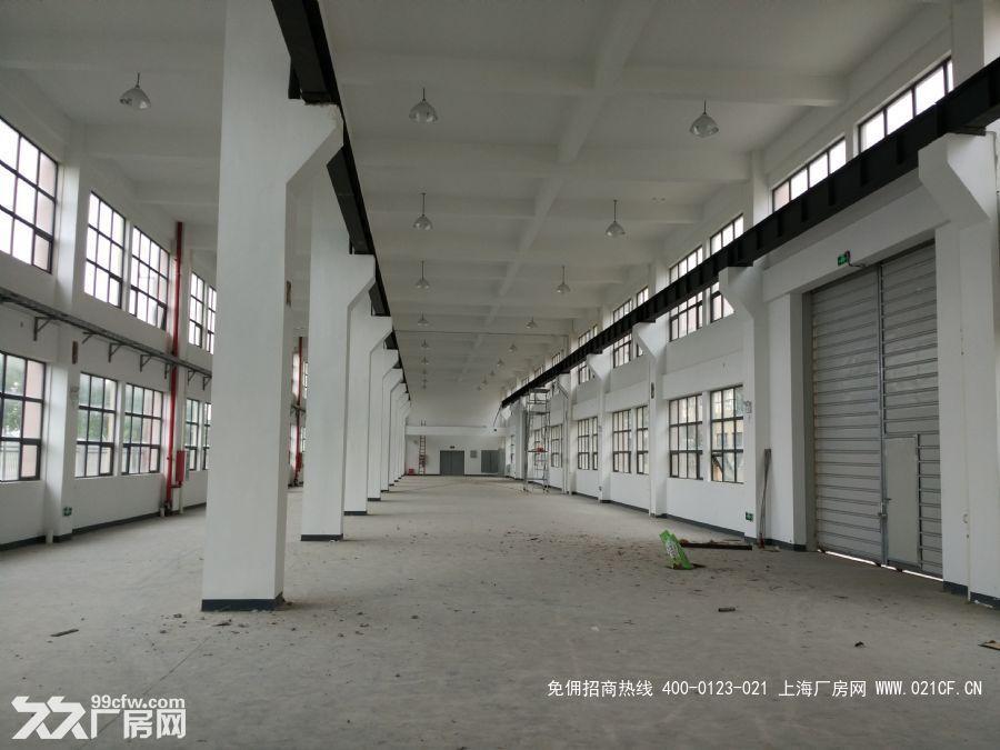 G1994    浦东    浦东临港重装产业区104地块带行车高标准厂房出租 26000平方米