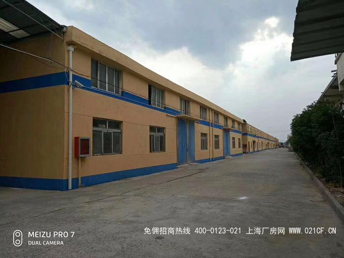 G2049 浦东南汇宣桥独门独院全部单层仓库出租 可加装喷淋 有高平台 场地大 6000平