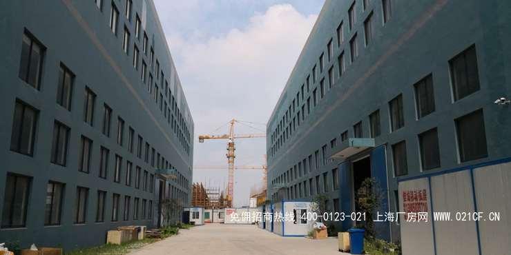 G2069嘉兴嘉善魏塘工业区有四栋二层厂房出租 高标准每层均可装行车 6200平起租  0.85元