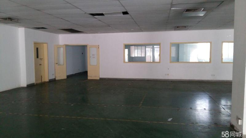 A8352 松江区九亭镇伴亭路258号 一楼有小面积100-600平,430/470平方小厂房可分割出租