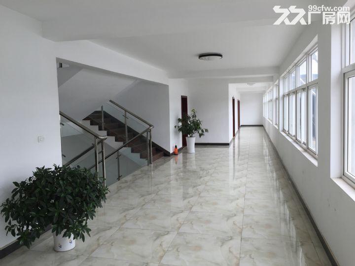 武汉郑店 独院钢构和框架结构厂房出租 交通便利、环境好