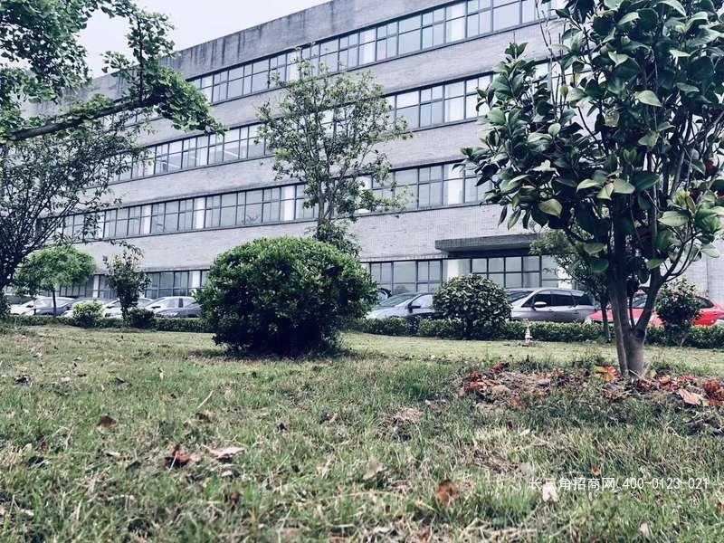 G2494 松江新桥食品园区 厂房出租  大小可分割出租