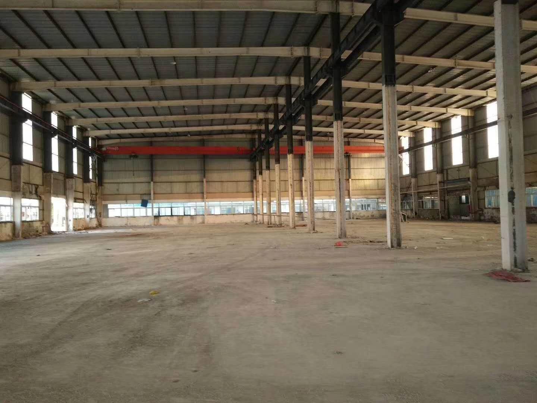 南京江北新区 浦口桥林新城周边 单层标准厂房出租 土地出售