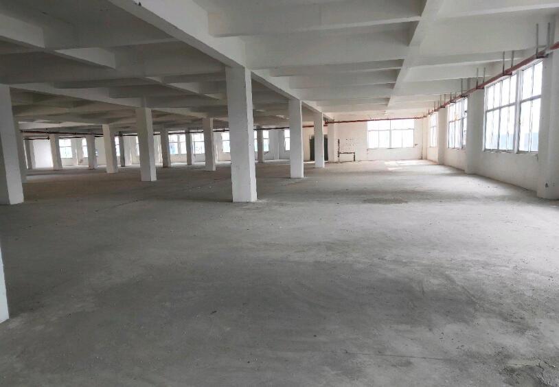 南京江宁九龙湖 东南大学 厂房 5000平米出租可分割