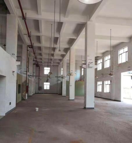 松江九亭镇盛龙路主干道 4000平方米厂房办公楼展厅可分割出租 230平起租