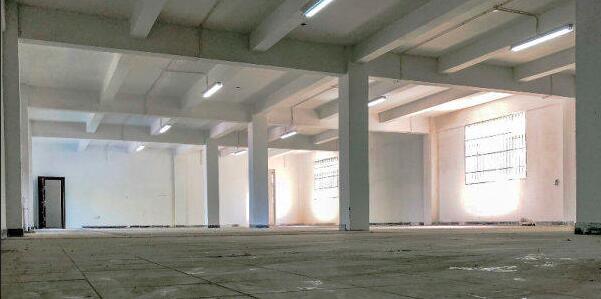 松江 新桥 民强路 近嘉闵高架 双层可生产可环坪104板800平厂房出租 1元